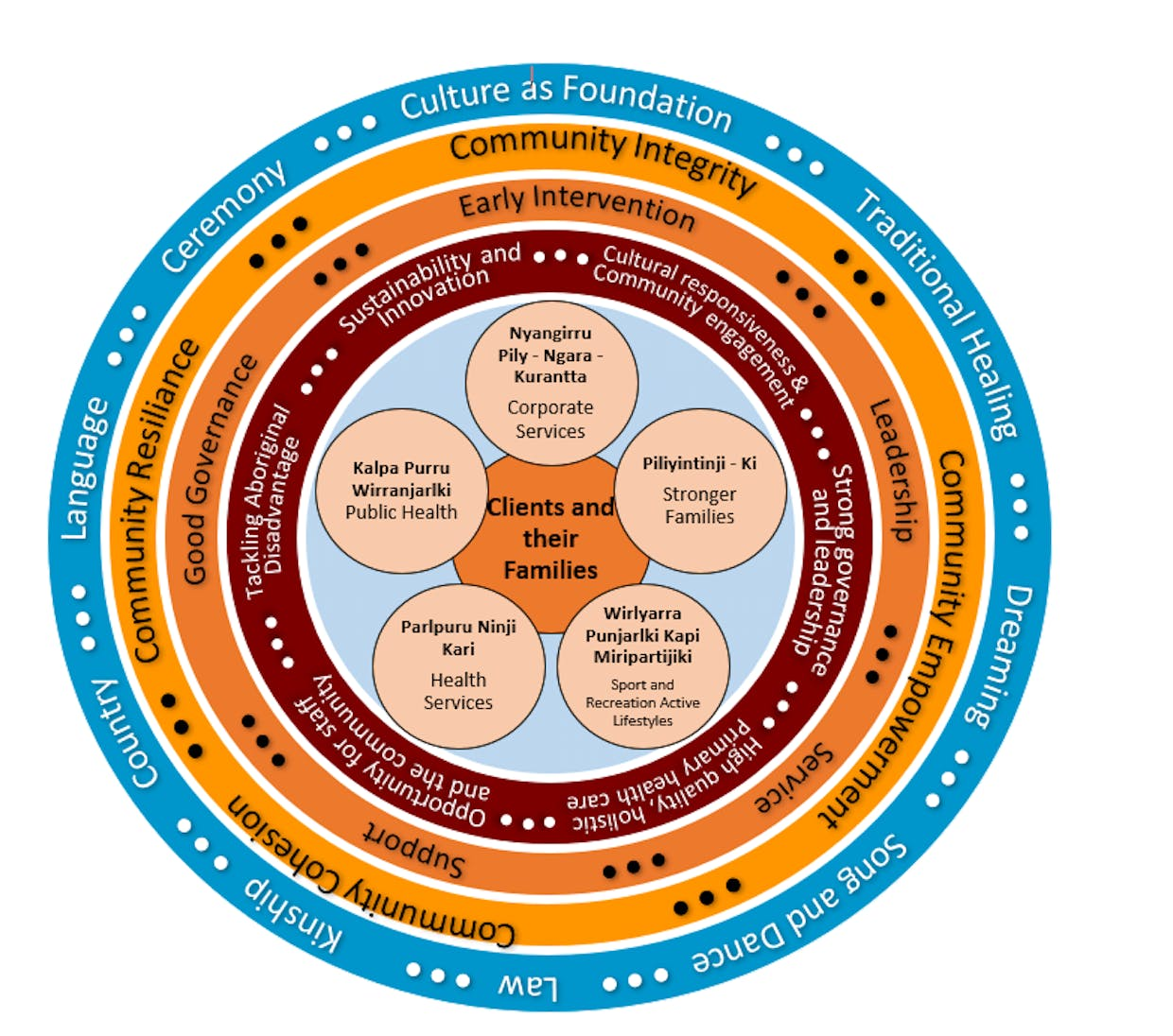 Primary health care delivery model for website